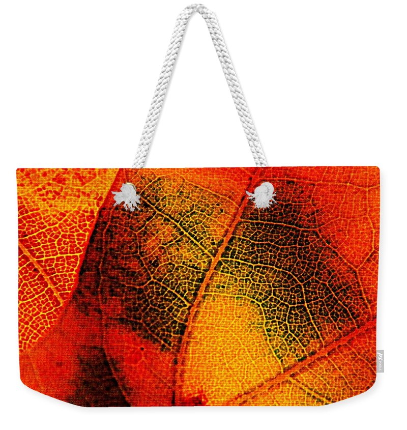 Nature Weekender Tote Bag featuring the photograph Gold And Green by Chris Berry
