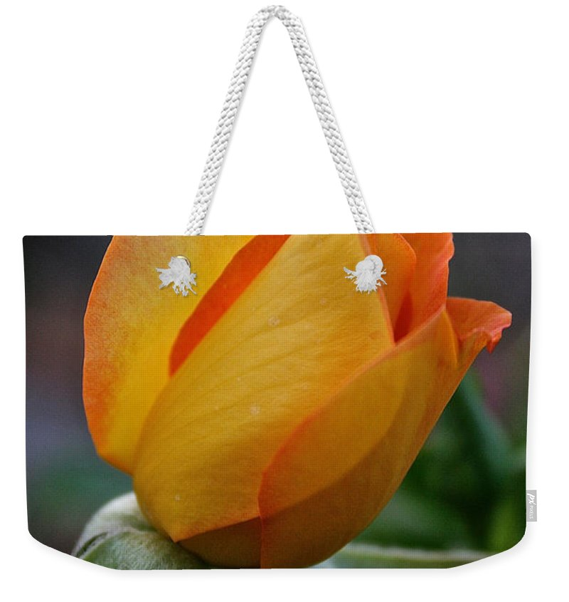 Outdoors Weekender Tote Bag featuring the photograph Gold Medal Bud by Susan Herber