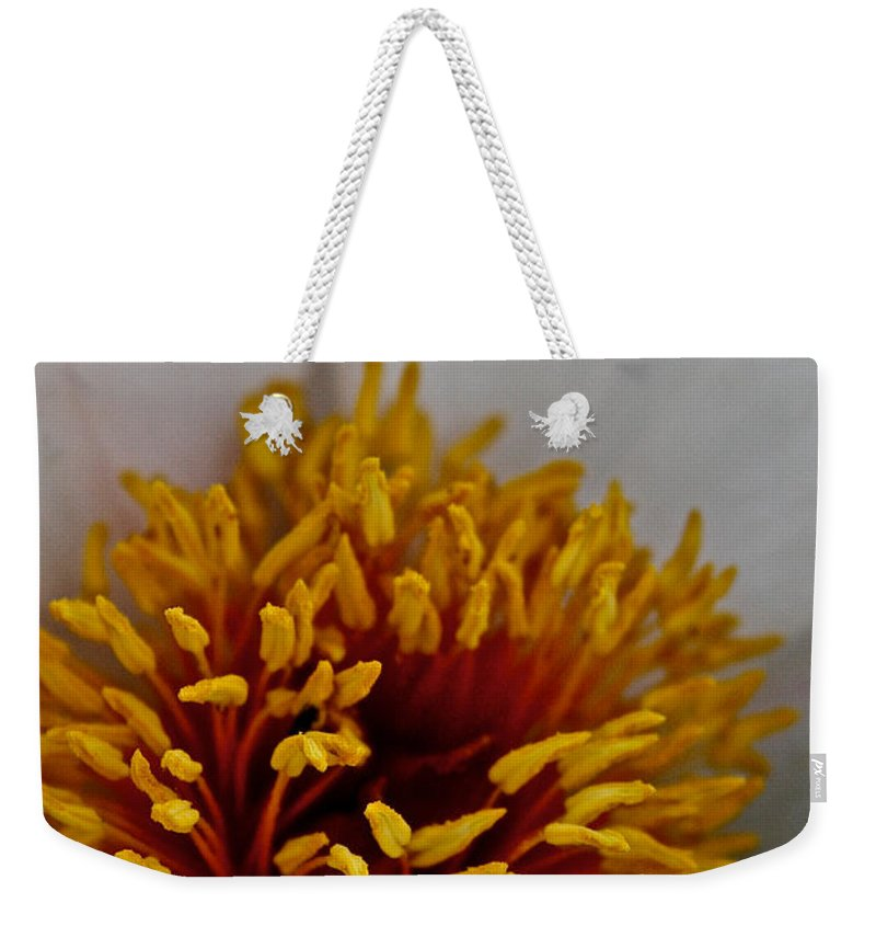Plant Weekender Tote Bag featuring the photograph Gold Stamen by Susan Herber
