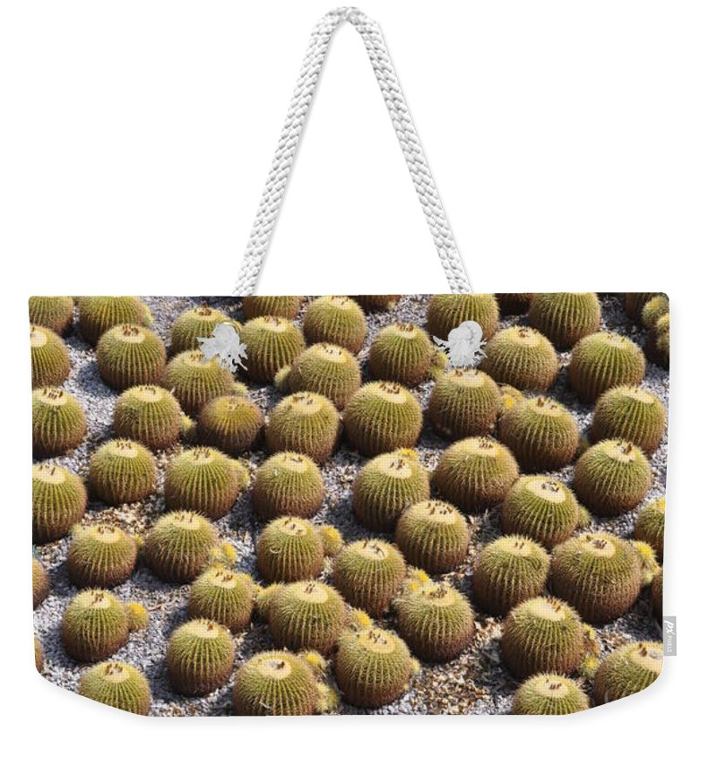 California Weekender Tote Bag featuring the photograph Golden Barrel Cactus 1 by Rich Bodane