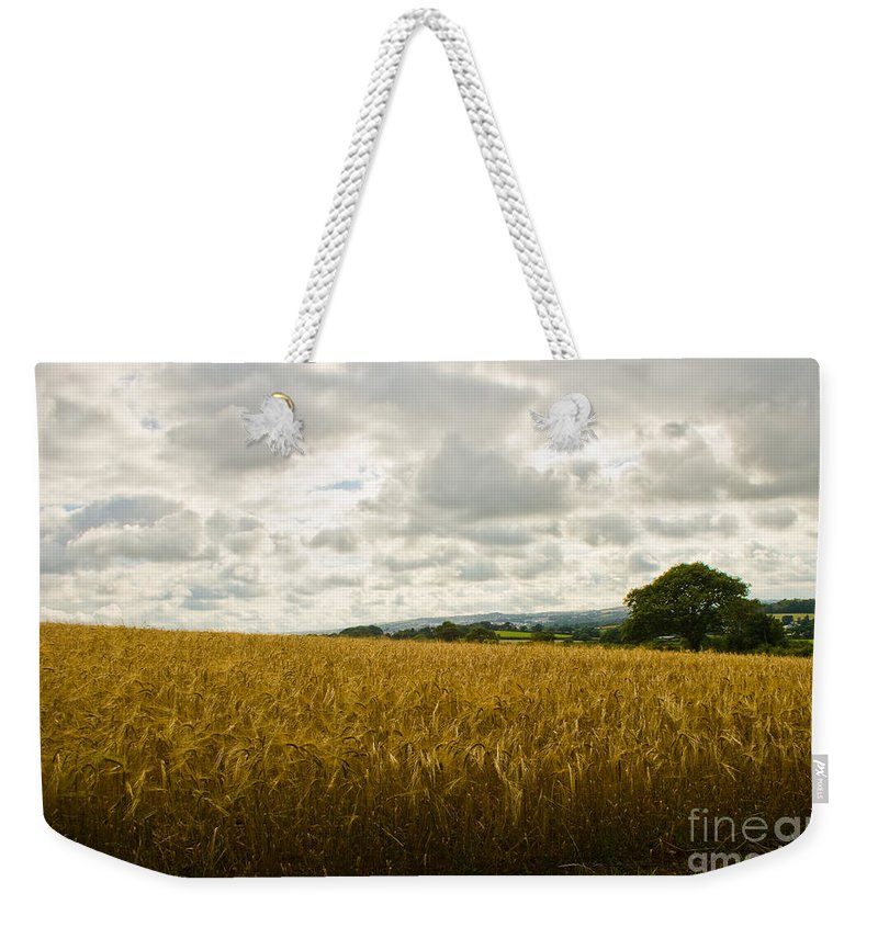Mylor Bridge Cornwall Weekender Tote Bag featuring the photograph Golden Field by Brian Roscorla