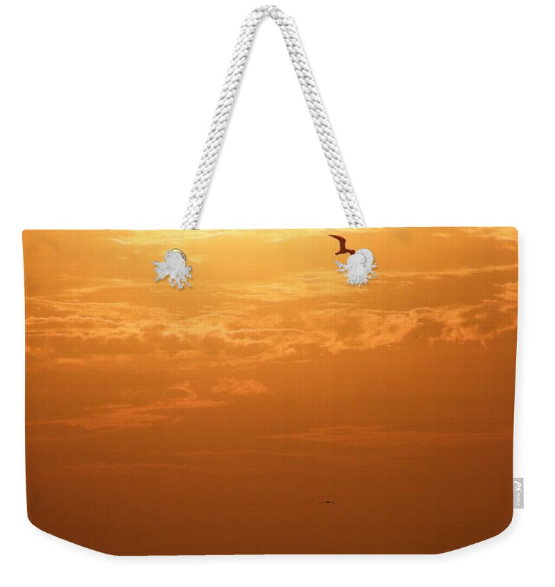 Sunset Weekender Tote Bag featuring the photograph Golden Flight by Kimberly Mohlenhoff