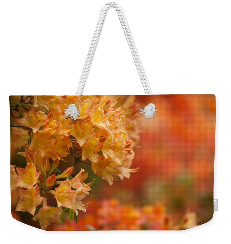Rhodies Weekender Tote Bag featuring the photograph Golden Orange Radiance by Mike Reid