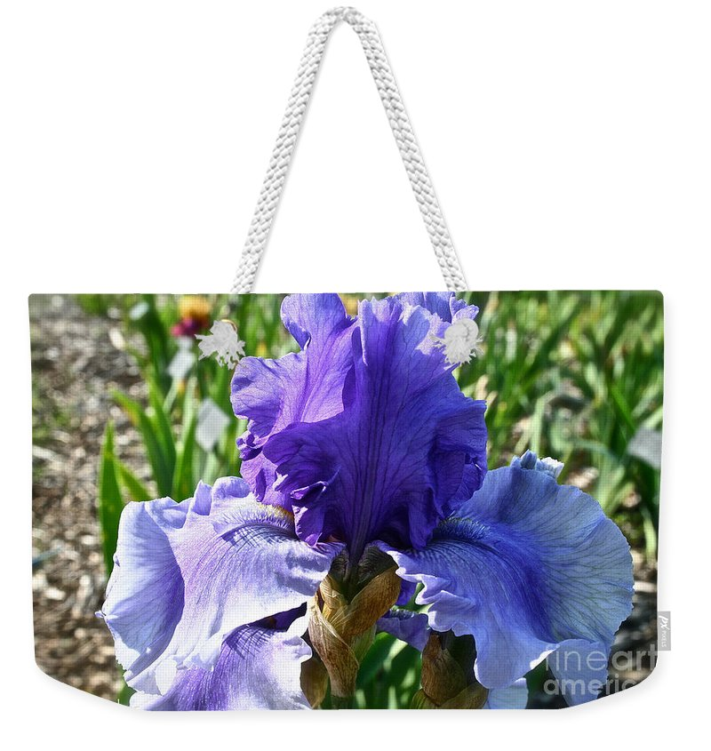 Plant Weekender Tote Bag featuring the photograph Good Morning by Susan Herber
