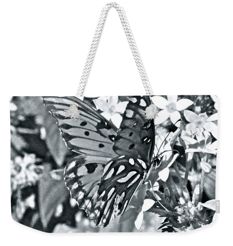 Butterfly Weekender Tote Bag featuring the photograph Gorgeous Gulf Fritillary by Carol Bradley