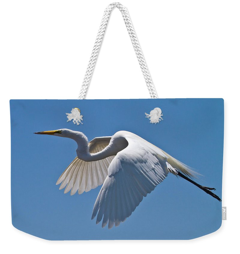 Great Egret Weekender Tote Bag featuring the photograph Great Egret by Bill Lindsay