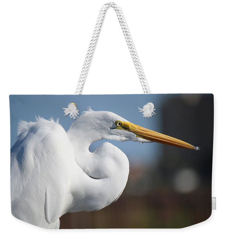 Roena King Weekender Tote Bag featuring the photograph Great Egret Portrait by Roena King