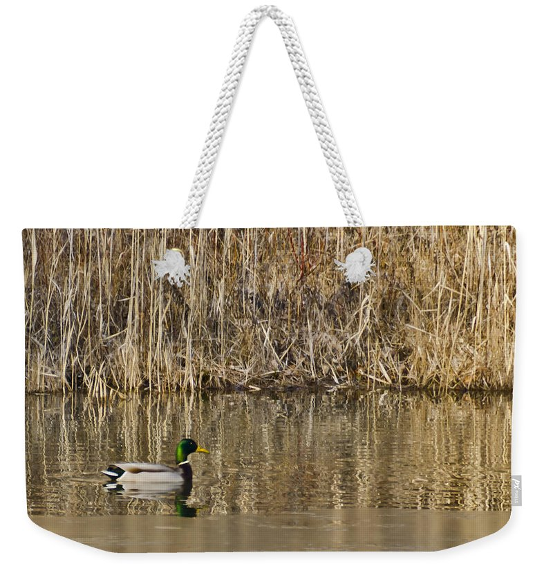 Usa Weekender Tote Bag featuring the photograph Green Drake Reflections by LeeAnn McLaneGoetz McLaneGoetzStudioLLCcom
