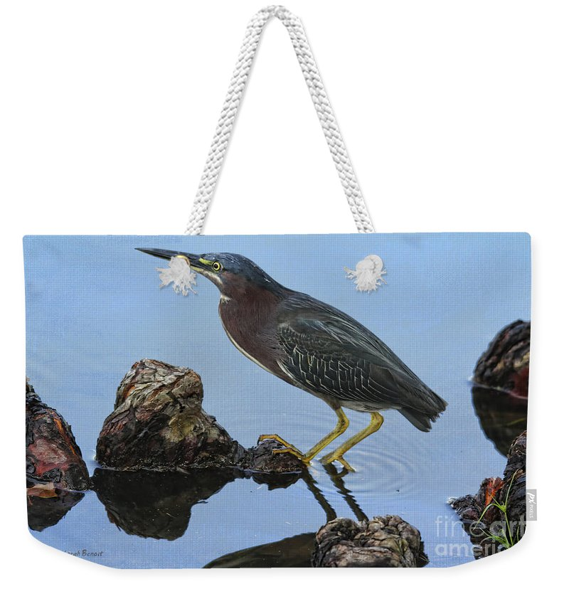 Green Heron Weekender Tote Bag featuring the photograph Green Heron Visiting The Pond by Deborah Benoit