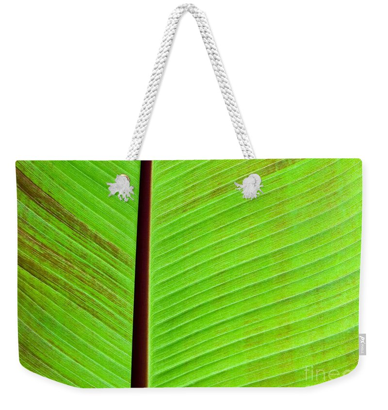 Green Weekender Tote Bag featuring the photograph Green Lines by Sabrina L Ryan