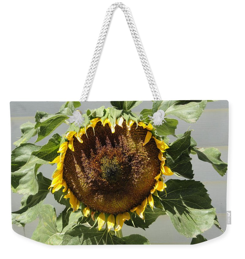 Sunflower Weekender Tote Bag featuring the photograph Green Ray by Shannon Grissom