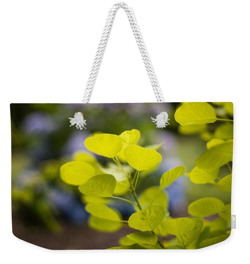 Flower Weekender Tote Bag featuring the photograph Leaves Illumination by Mike Reid
