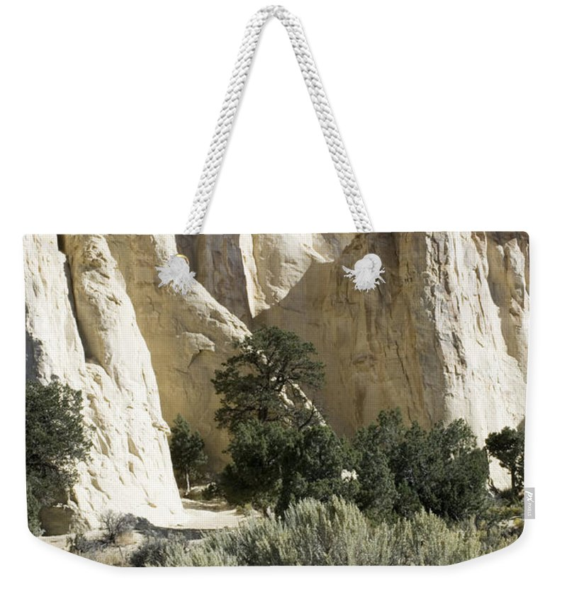 Bronstein Weekender Tote Bag featuring the photograph Grosvenor by Sandra Bronstein