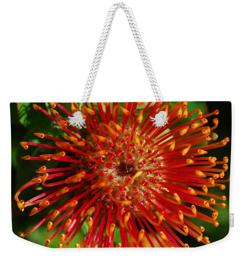 Gum Weekender Tote Bag featuring the photograph Gum Flower by Georgiana Romanovna