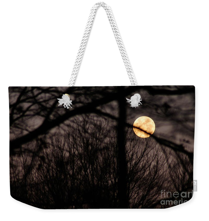 Clay Weekender Tote Bag featuring the photograph Haunted Forest by Clayton Bruster