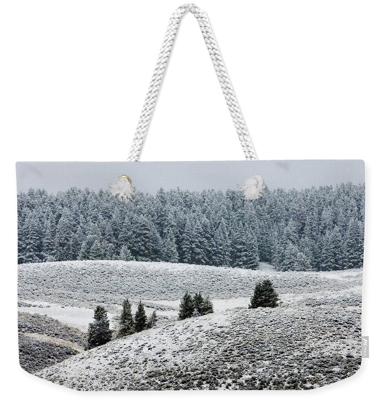 Landscape Weekender Tote Bag featuring the photograph Hayden Valley Storm by Sandra Bronstein