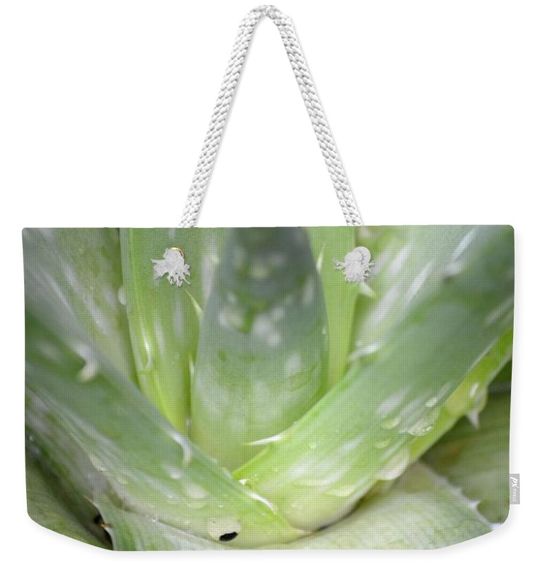 Heart Weekender Tote Bag featuring the photograph Heart Of An Aloe by Maria Urso
