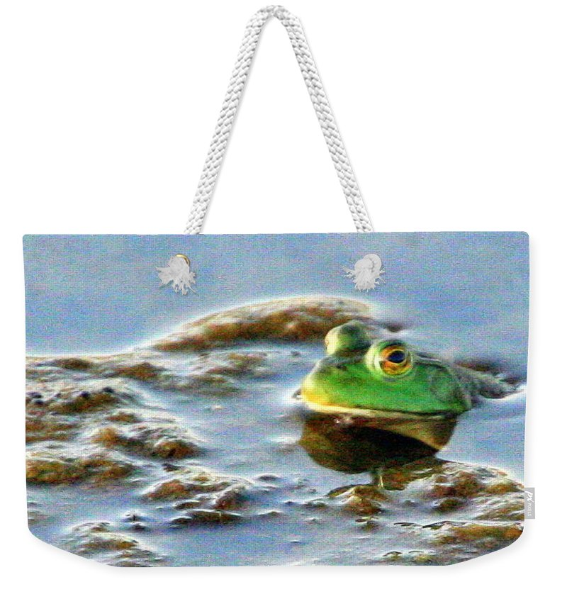 American Bullfrog Weekender Tote Bag featuring the photograph Here's Looking At You by Laurel Talabere