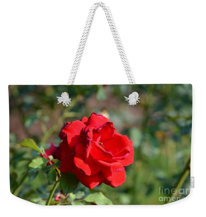 Hermosa Weekender Tote Bag featuring the photograph Hermosa by Maria Urso