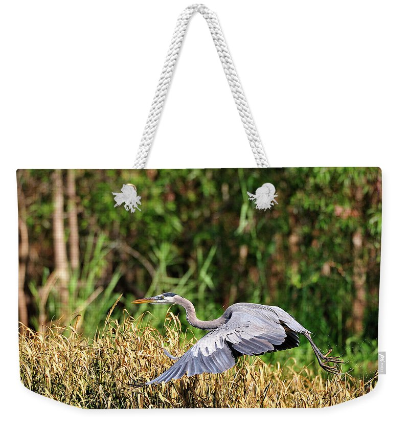 Great Blue Heron Weekender Tote Bag featuring the photograph Heron Flying Along The River Bank by Bill Dodsworth