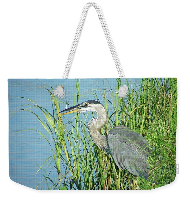 Heron Weekender Tote Bag featuring the digital art Heron Rockefeller Wma La by Lizi Beard-Ward
