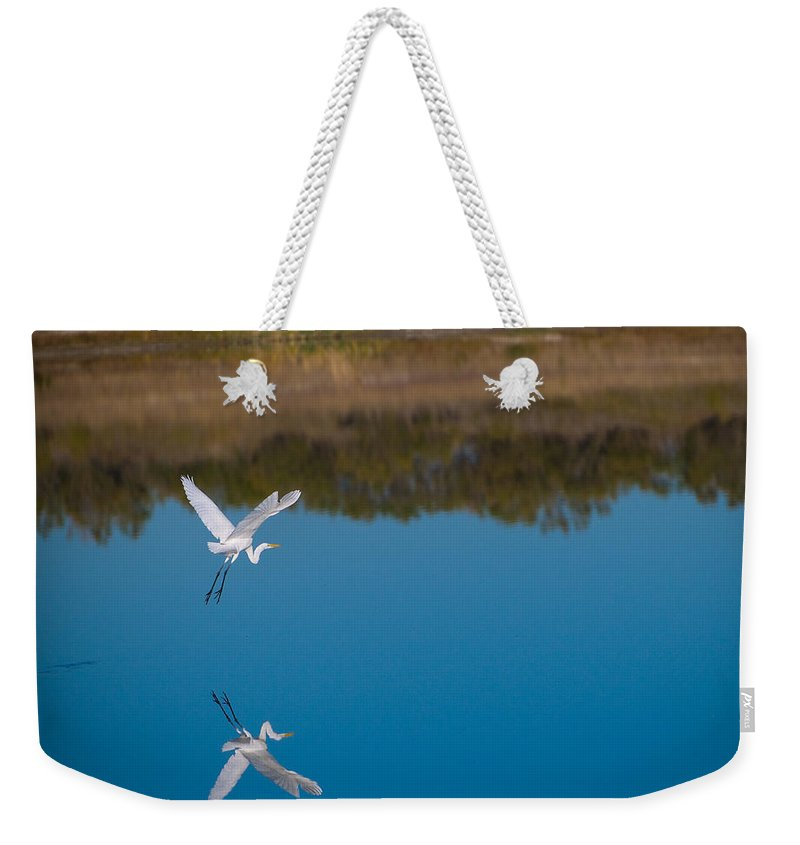 Fall Color Weekender Tote Bag featuring the photograph Herron 5 by Sean Wray