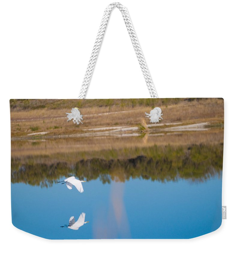 Fall Color Weekender Tote Bag featuring the photograph Herron 6 by Sean Wray