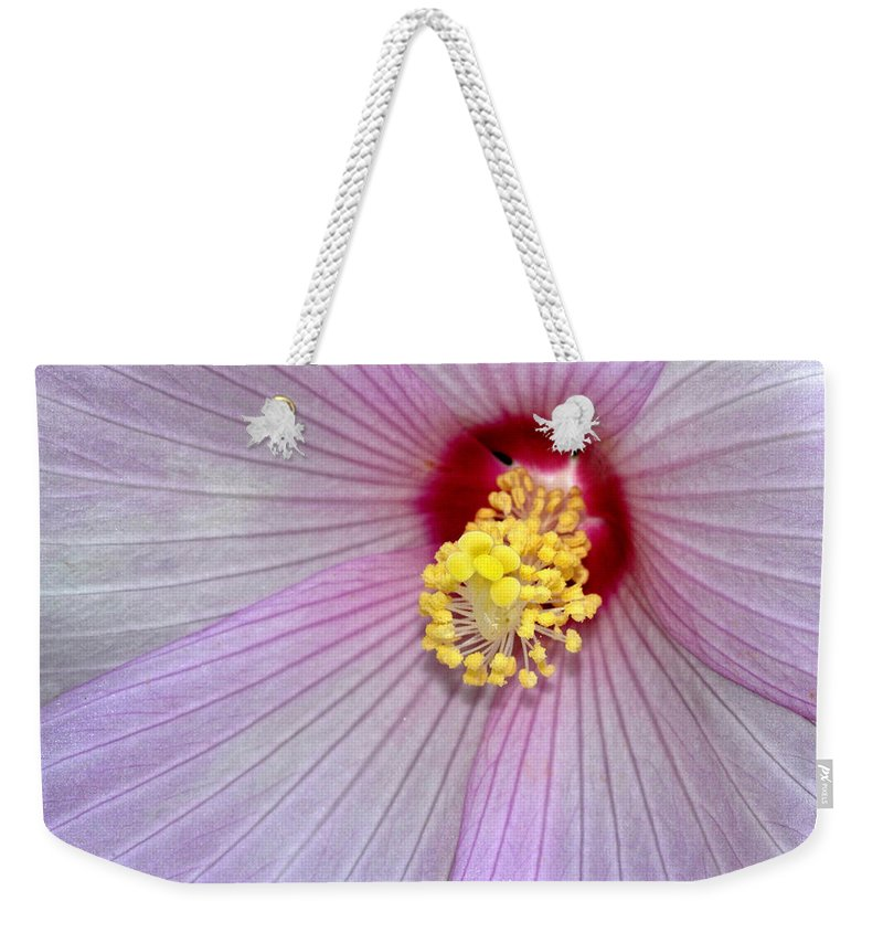 Hibiscus Weekender Tote Bag featuring the photograph Hibiscus Closeup by Dave Mills