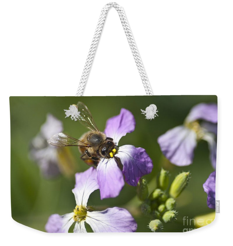 Honey Bee Weekender Tote Bag featuring the photograph Honey Bee by Jim And Emily Bush