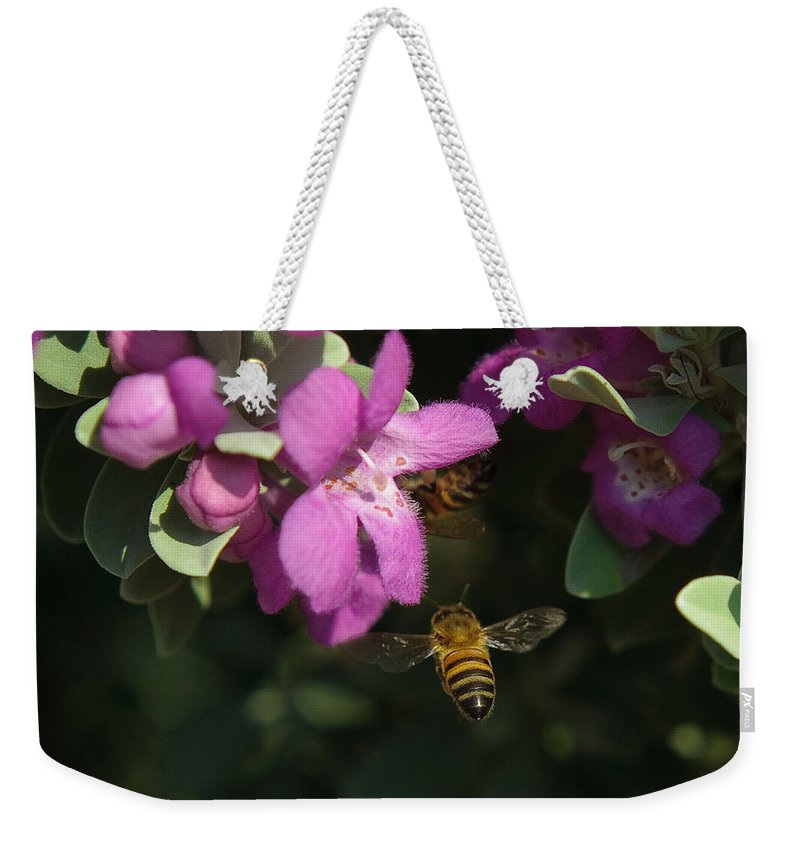 Backyard Weekender Tote Bag featuring the photograph Honey Bees On Sage 3 by Sean Wray