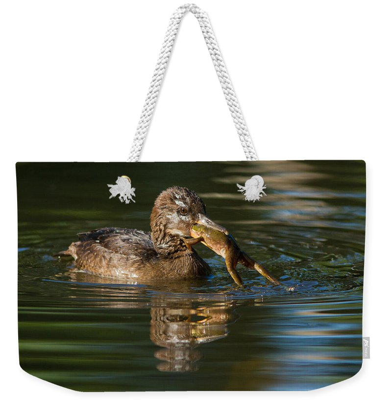 Beaks Weekender Tote Bag featuring the photograph Hooded Merganser And Bullfrog by Mircea Costina Photography