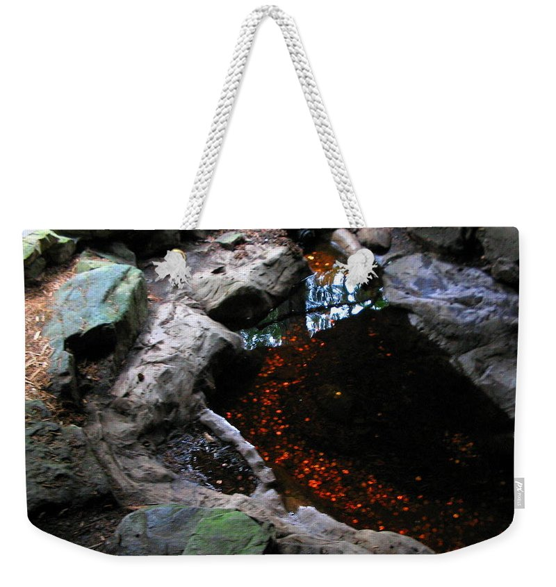 Coins Weekender Tote Bag featuring the photograph Hopeful Wishing by April Patterson