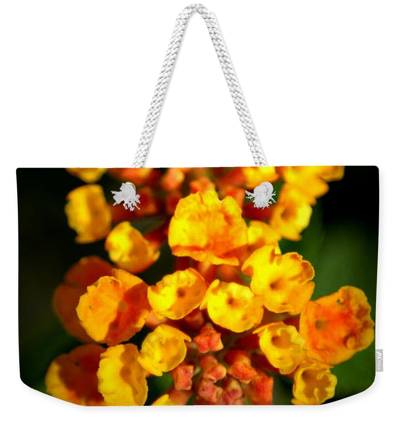 Flower Weekender Tote Bag featuring the photograph Horn Section by David Weeks