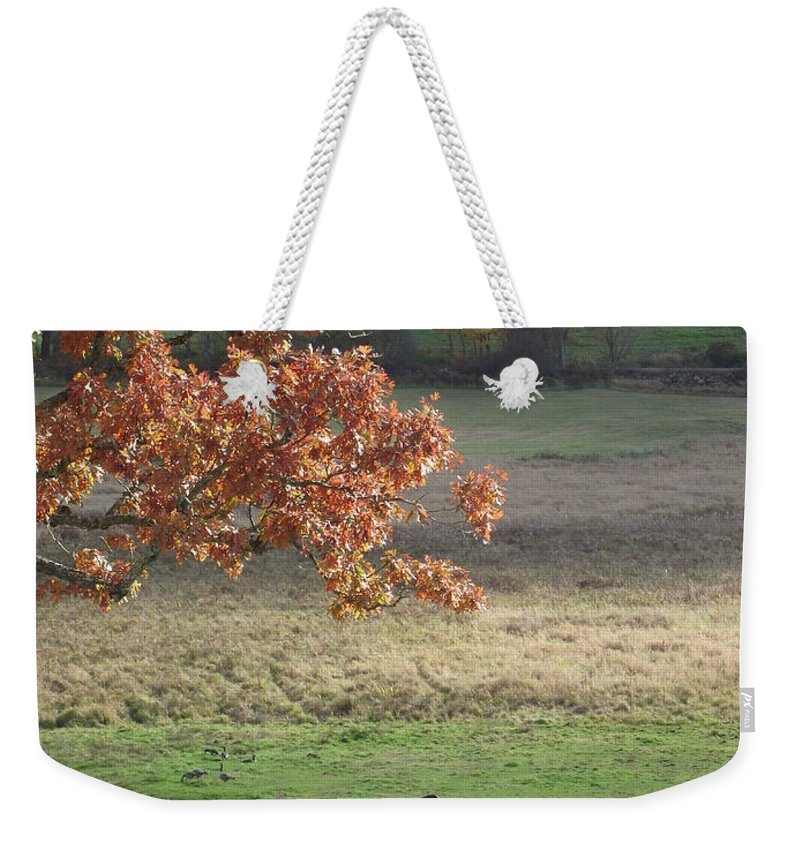 University Of Connecticut Weekender Tote Bag featuring the photograph Horse Barn Hill Pasture by Michelle Welles