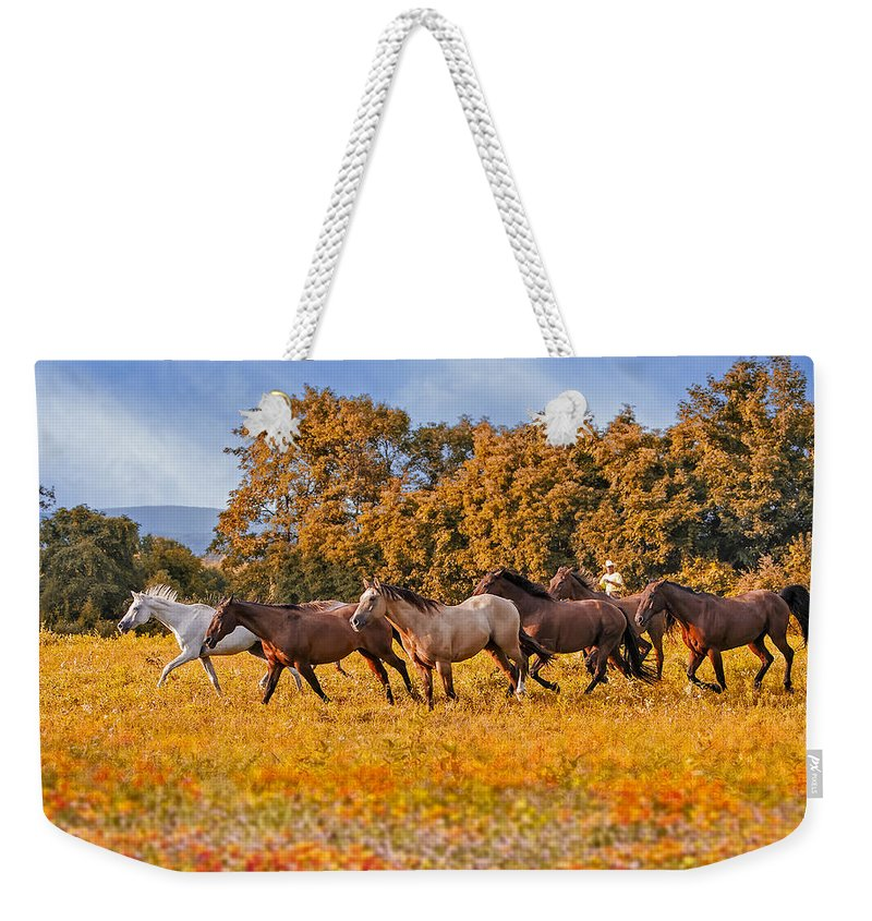 Horse Weekender Tote Bag featuring the photograph Horses Running Free by Susan Candelario
