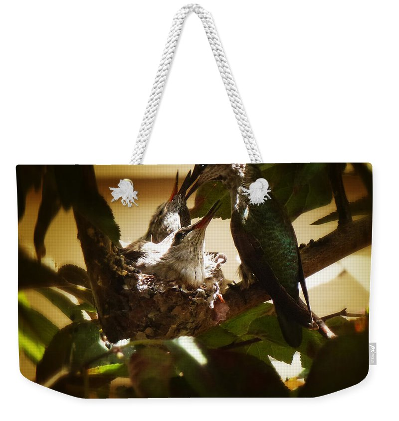 The Hummingbird Weekender Tote Bag featuring the photograph Hummingbird Mother Feeding Her Two Babies II by Xueling Zou