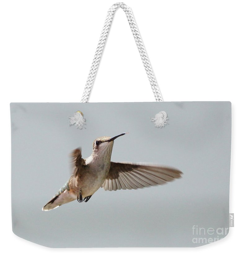 Hummingbird Weekender Tote Bag featuring the photograph Hummingbird With Tongue Out by Lori Tordsen