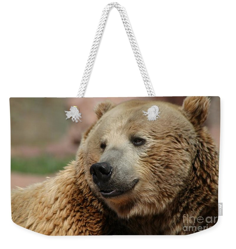 Bear Weekender Tote Bag featuring the photograph I Am Smiling by Living Color Photography Lorraine Lynch