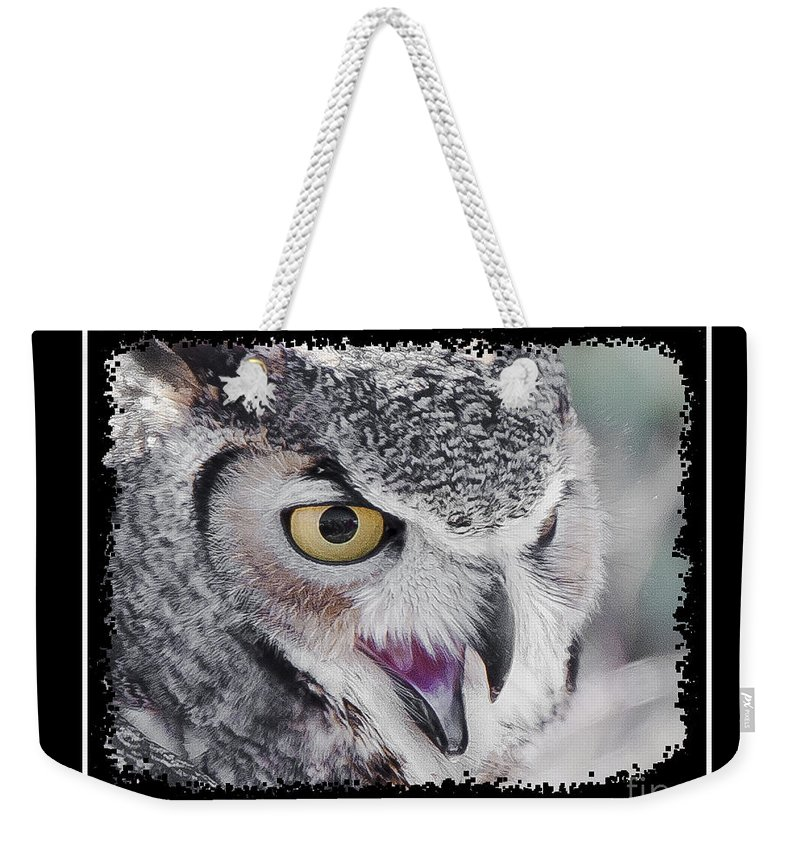 Bird Weekender Tote Bag featuring the photograph I Dare You by Larry White