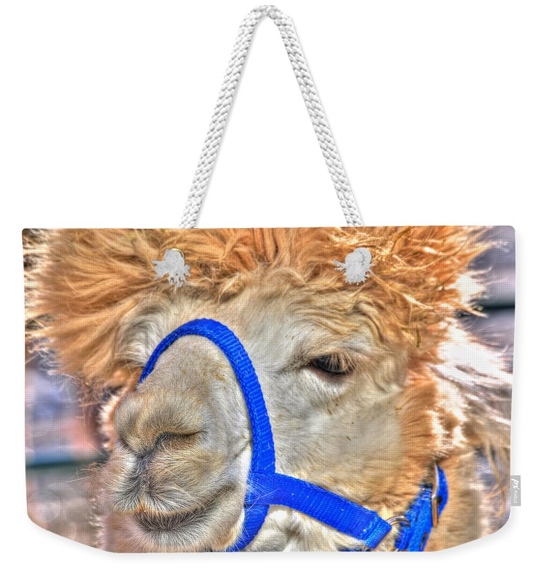 Weekender Tote Bag featuring the photograph I Know  You Just Lovvvve My Hairdo Don T Ya by Michael Frank Jr