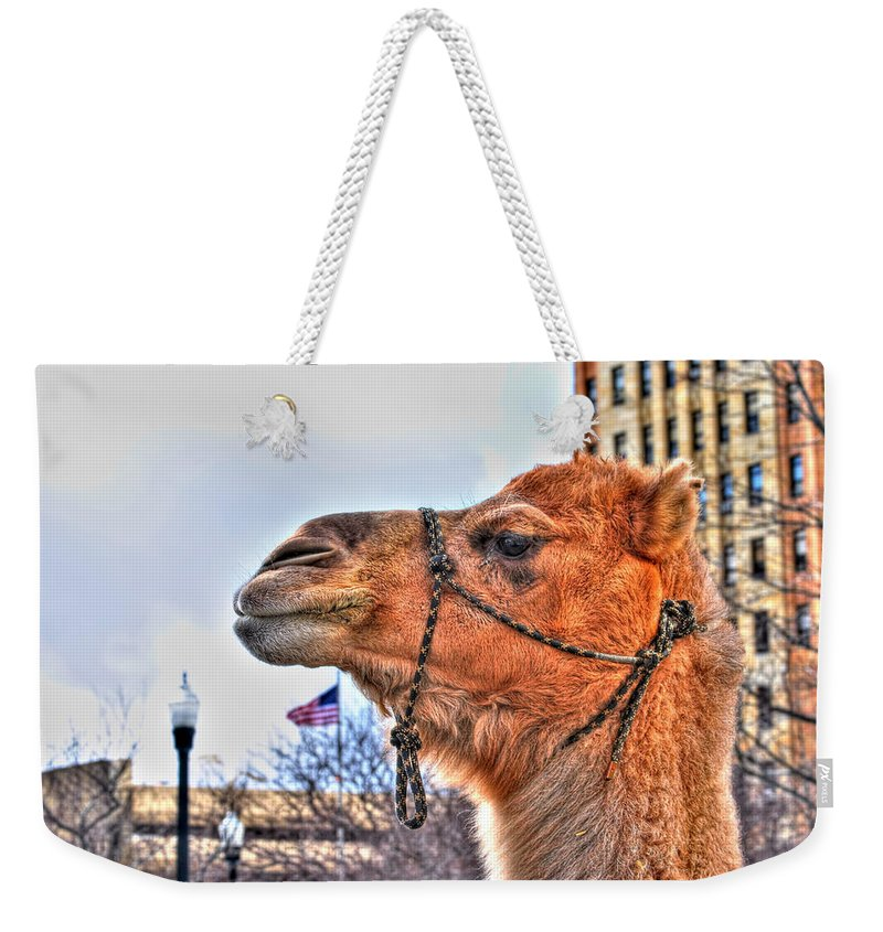 Weekender Tote Bag featuring the photograph I Pledge Allegiance To The Flag Of The United States Of America by Michael Frank Jr