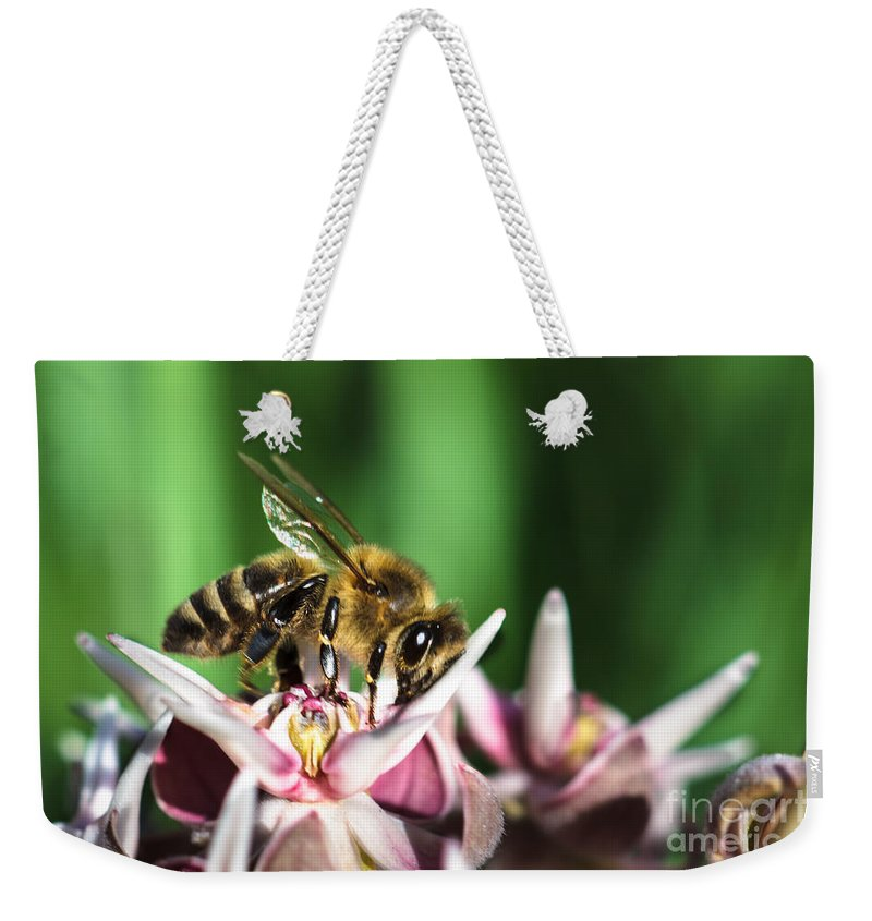 Animals Weekender Tote Bag featuring the photograph I See You by Robert Bales