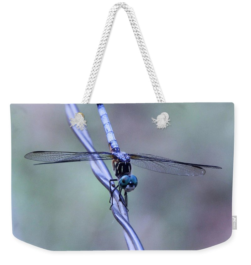Blue Weekender Tote Bag featuring the photograph I Walk The Line by Rebecca Morgan
