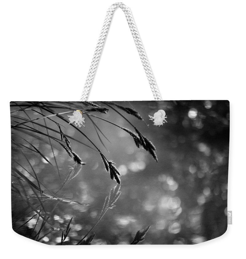 Photograph Weekender Tote Bag featuring the photograph In The Early Morning Hours by Vicki Pelham