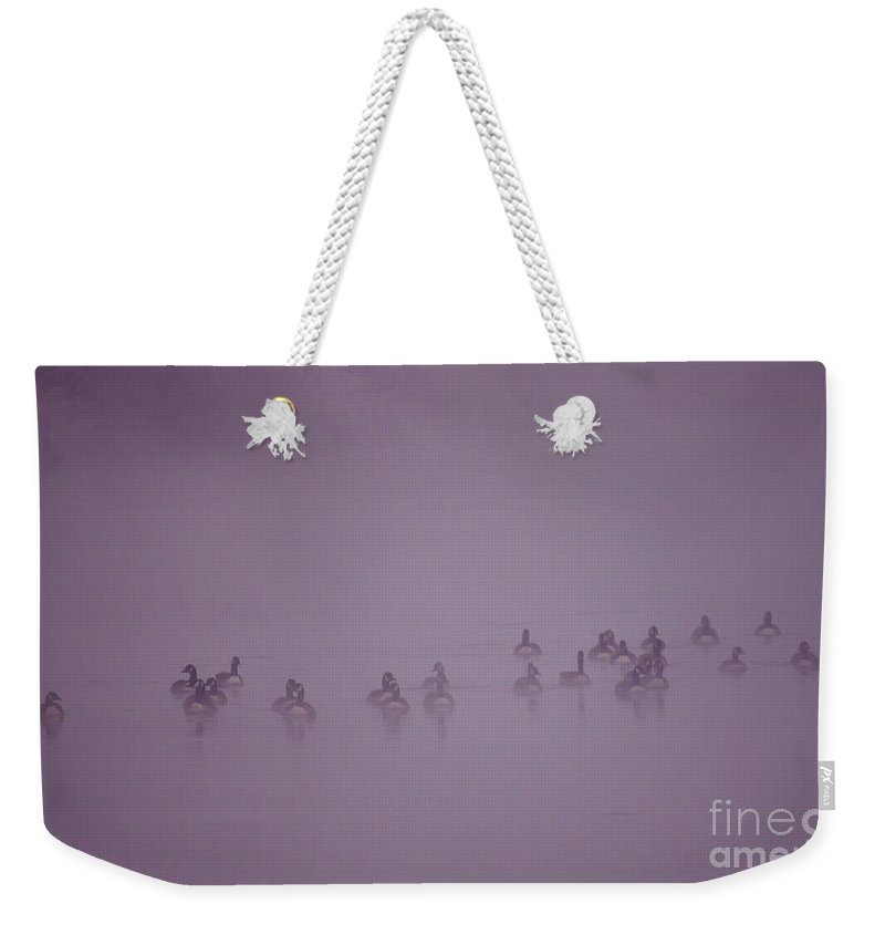 Weekender Tote Bag featuring the photograph In The Fog by Angel Ciesniarska