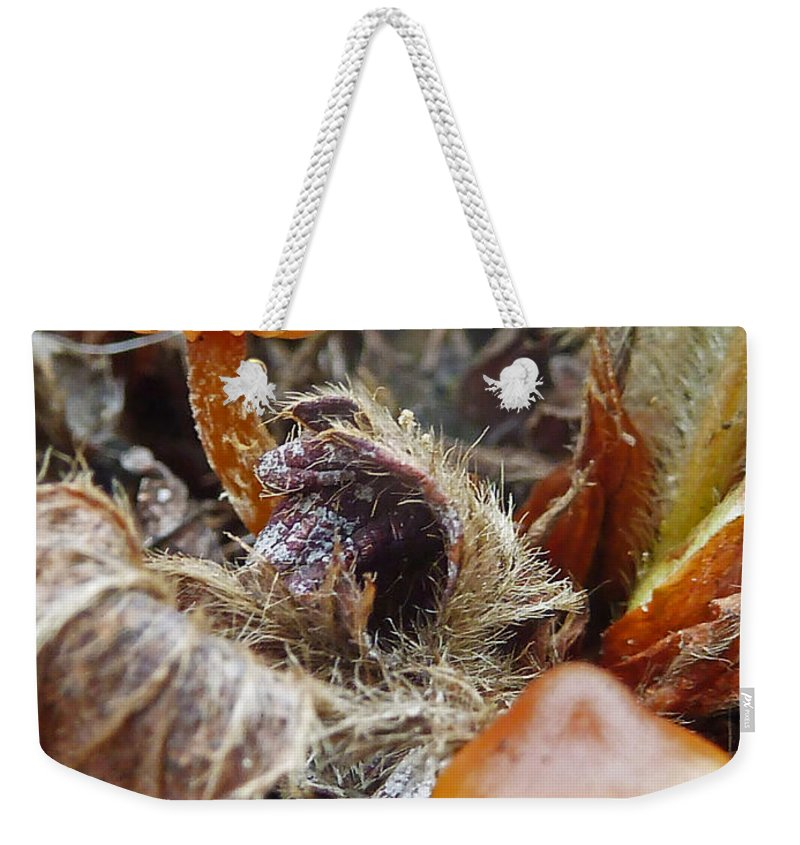 Strawberry Patch Weekender Tote Bag featuring the photograph In The Strawberry Patch by Steve Taylor
