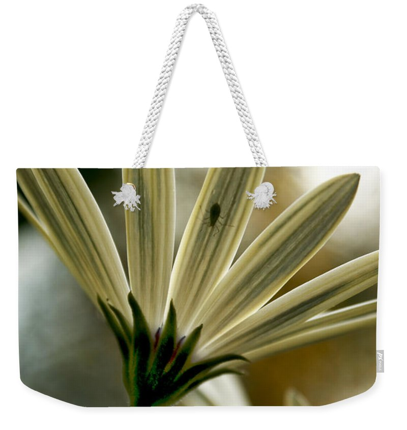 Daisy Weekender Tote Bag featuring the photograph Inner Glow by Heather Applegate