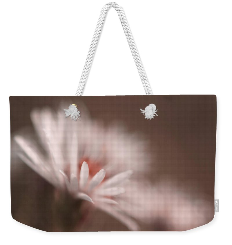 Daisy Weekender Tote Bag featuring the photograph Innocence - 05-01a by Variance Collections