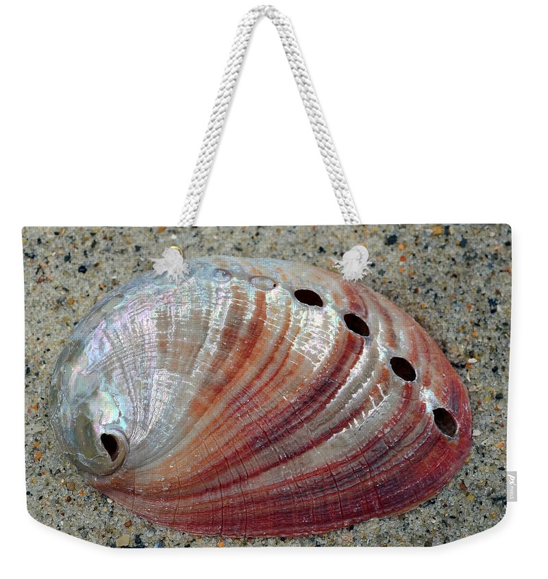 Shell Weekender Tote Bag featuring the photograph Iridescent Treasure Macro by Sandi OReilly