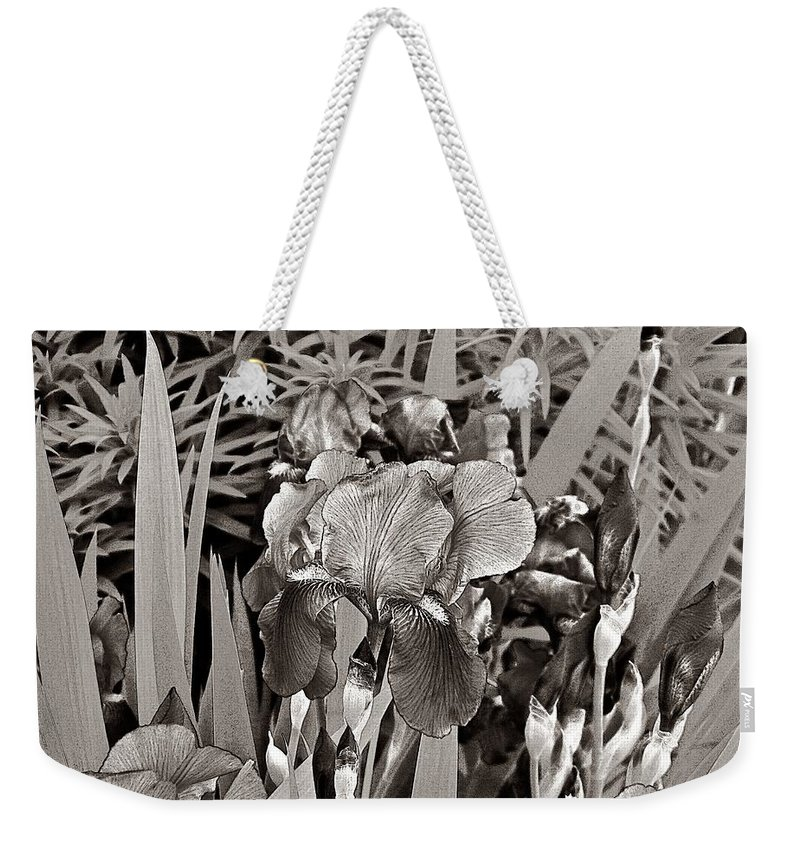 Nature Weekender Tote Bag featuring the photograph Iris Enhanced With Pencil by Chris Berry